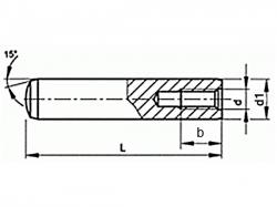 Kolík válcový vnitřní závit   DIN 7979D 20x100 m6